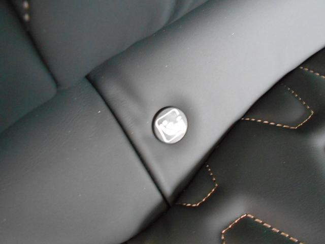 GT ブルーHDi プレミアムレザーエディション 当社試乗車 パッケージオプション付き ナイトビジョン Pアシスト 電動ブラックレザー 衝突軽減ブレーキ アダプティブクルーズ レーンキープ FOCAL 純正19インチAW 新車保証継承(51枚目)