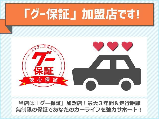 X 三菱ダイヤトーンナビ フルセグTV CD バックカメラ スマートキー 社外19インチアルミ LEDヘッドライト オートライト ABS エアバッグ(58枚目)