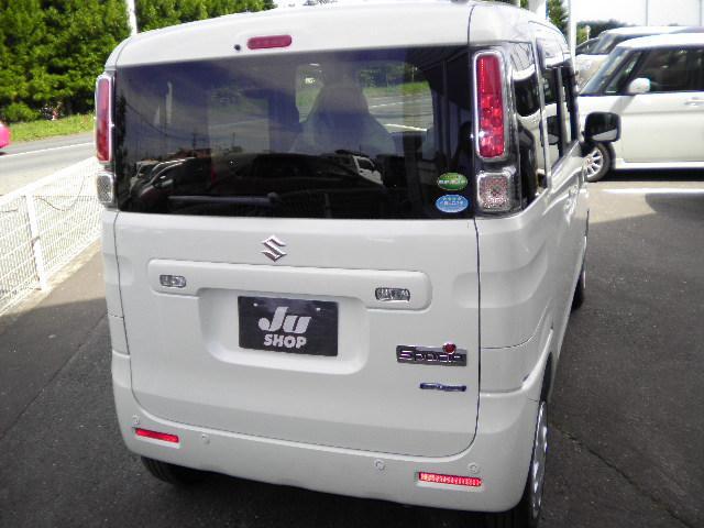 ハイブリッドX4WD電動両側スライドドア(9枚目)