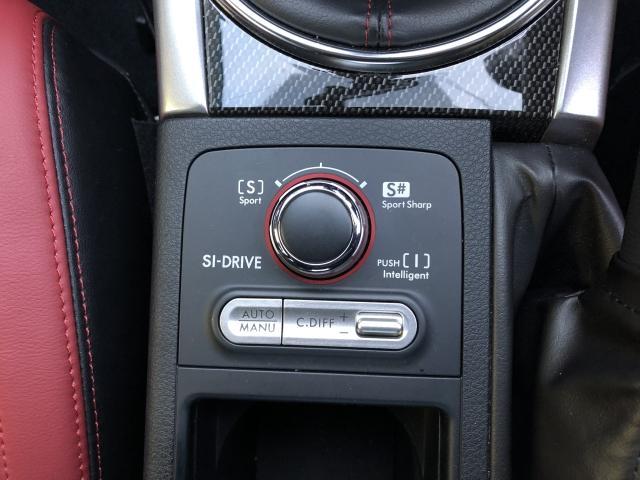 STI タイプS 4WD STI リップ 社外オーディオ(18枚目)