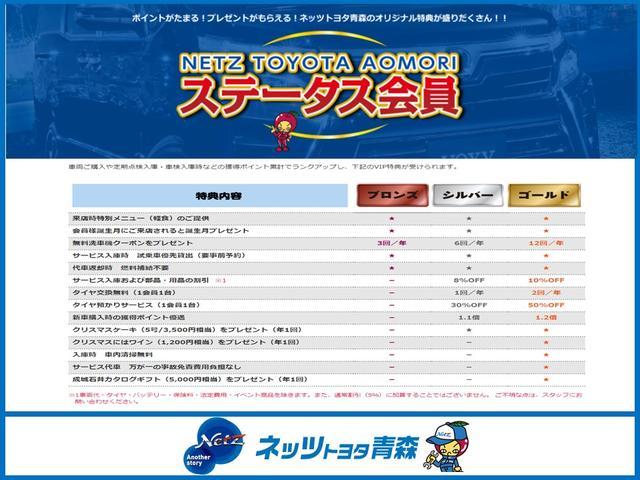 F 4WD フルセグ メモリーナビ DVD再生 ミュージックプレイヤー接続可 バックカメラ キーレス CD ABS エアバッグ(31枚目)