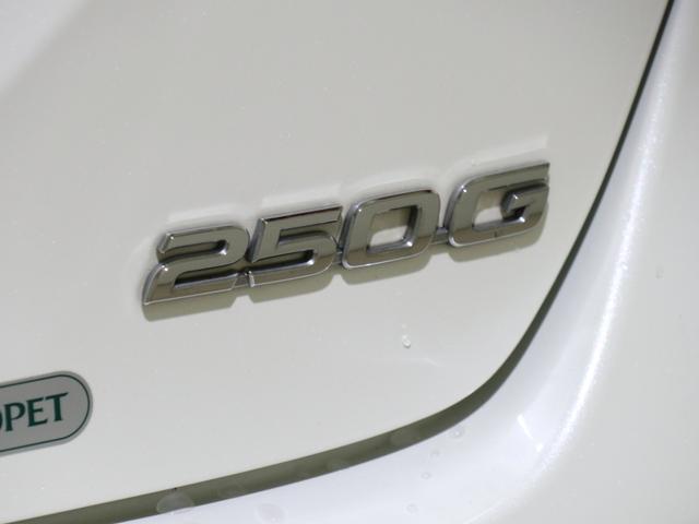 250G Fパッケージ メモリーナビ 地デジ バックカメラ DVD再生 カーテンエアバック サイドエアバック ESC キーレス イモビ 16AW ETC 禁煙車(64枚目)