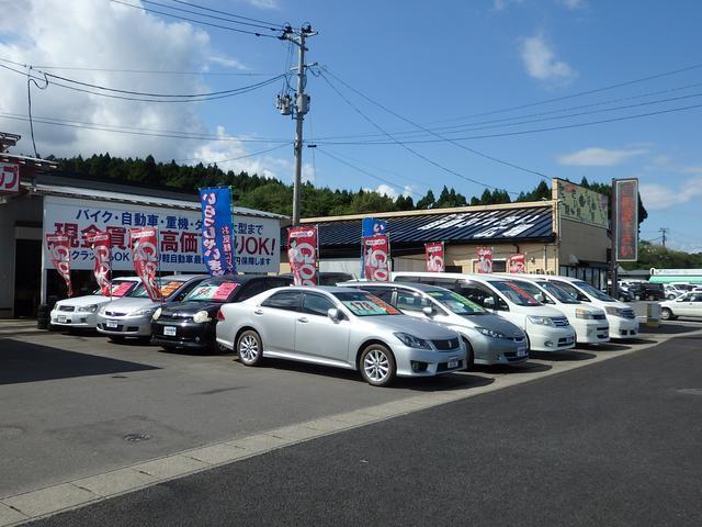 GTS ナビ TV ETC HID インテリキー 4WD(55枚目)