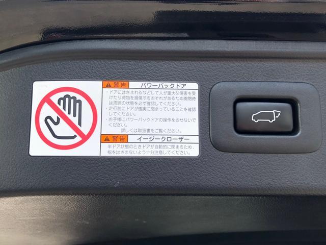 2.5S Aパッケージ -奈良県仕入- 10インチSDナビ 後席モニター 電動リアゲート クルーズコントロール CD・DVD再生 フルセグ BT接続 バックカメラ ETC ハーフレザーシート コーナーセンサー LEDライト(32枚目)