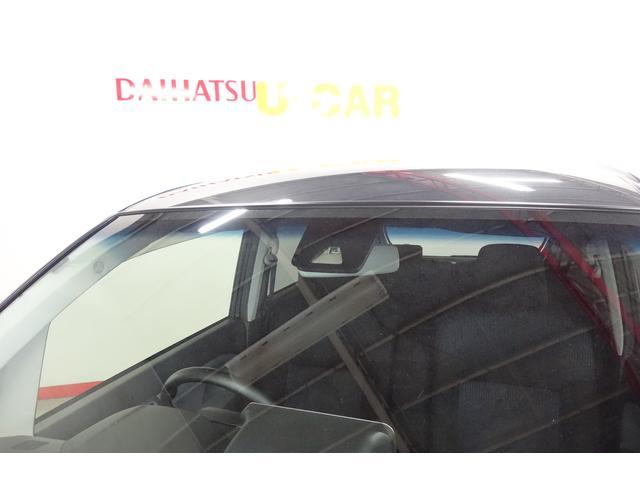 カスタム RS SAII(27枚目)