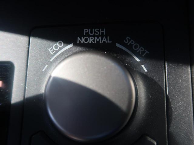 NX200t Iパッケージ ガラスルーフ 純正SDナビ 禁煙(10枚目)