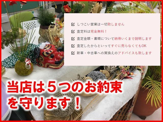 ドルチェX FOUR 4WD ナビTV Bカメラ 専用シート(62枚目)