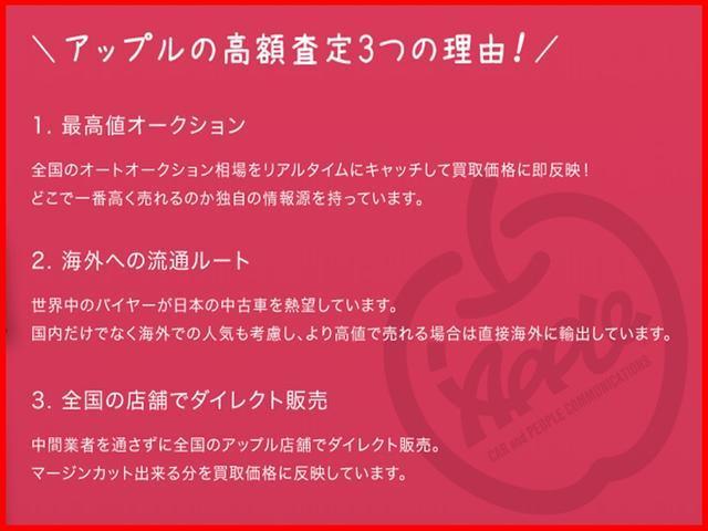 ドルチェX FOUR 4WD ナビTV Bカメラ 専用シート(75枚目)