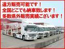 ドルチェX FOUR 4WD ナビTV Bカメラ 専用シート(68枚目)
