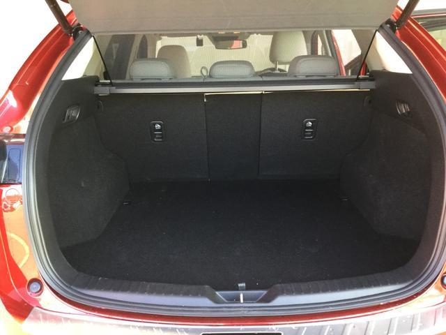 XD Lパッケージ 4WD DAMDフルエアロ(18枚目)