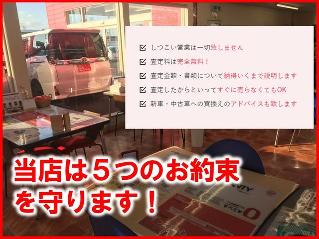 JスタイルII デュアルレーダーブレーキサポート 純正ナビ マルチビューモニター エネチャージ  スマートキー エンジンスターター(49枚目)
