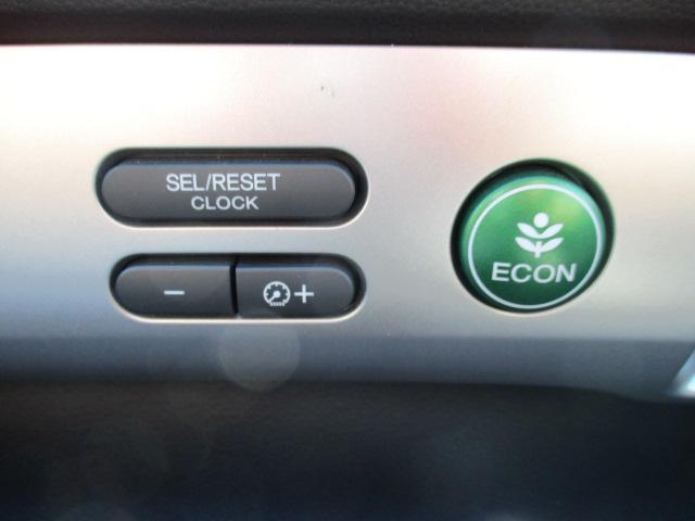 G プレミアムエディション 4WD 禁煙車 寒冷地仕様 両側電動スライドドア プレミアムインターナビ フルセグ バックカメラ フリップダウンモニター ハーフレザーシート クルーズコントロール ETC HIDライト(10枚目)