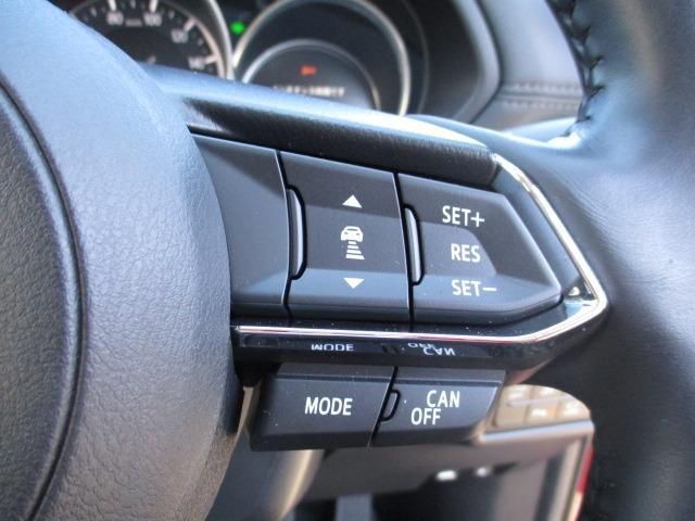 XD プロアクティブ 4WD フルセグナビ CD DVD SD ブルートゥース バックカメラ フリップダウンモニター 衝突軽減装置 追従クルコン ハンドルヒーター シートヒーター BSM LEDライト スマートキー(34枚目)