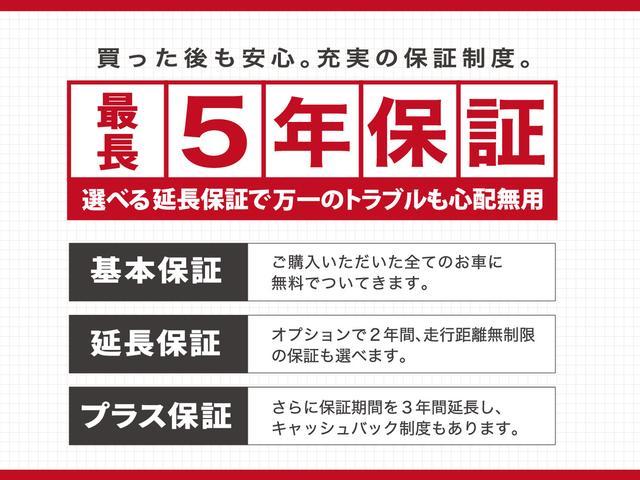 Xターボ 衝突被害軽減装置 社外ナビ ワンセグ CD DVD HIDヘッドライト プッシュスタート スマートキー シートヒーター(47枚目)