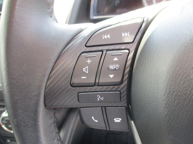 13Sブラックレザーリミテッド 4WD 衝突軽減装置 純正SDナビ ドライブレコーダー ETC シートヒーター フルセグ BLUETOOTHオーディオ バックカメラ CD DVD再生 AUX USB接続 LEDヘッドランプ フォグ(34枚目)