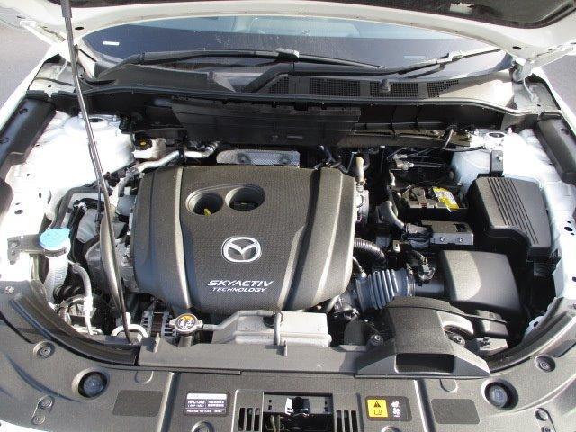 25S Lパッケージ 4WD ワンオーナー 衝突被害軽減装置 プッシュスタート スマートキー 全周囲モニター 電動リアゲート レーダークルコン SDナビ CD DVD再生 フルセグ LEDライト 17インチアルミ(4枚目)