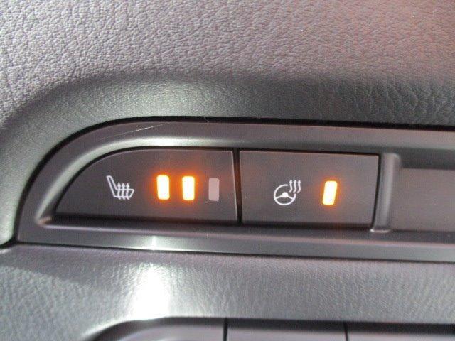 25S Lパッケージ 4WD ワンオーナー 衝突被害軽減装置 プッシュスタート スマートキー 全周囲モニター 電動リアゲート レーダークルコン SDナビ CD DVD再生 フルセグ LEDライト 17インチアルミ(20枚目)