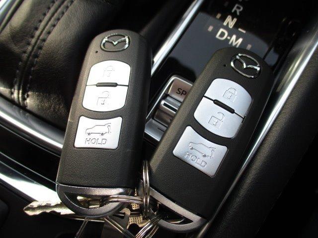 25S Lパッケージ 4WD ワンオーナー 衝突被害軽減装置 プッシュスタート スマートキー 全周囲モニター 電動リアゲート レーダークルコン SDナビ CD DVD再生 フルセグ LEDライト 17インチアルミ(29枚目)