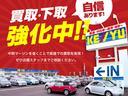 Xターボ 衝突被害軽減装置 社外ナビ ワンセグ CD DVD HIDヘッドライト プッシュスタート スマートキー シートヒーター(48枚目)