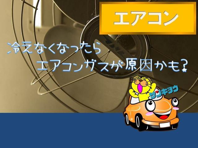 F 禁煙車 社外SDナビ ETC キーレス(46枚目)