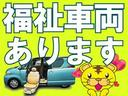 F 禁煙車 社外SDナビ ETC キーレス(53枚目)