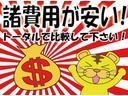 F 禁煙車 社外SDナビ ETC キーレス(58枚目)