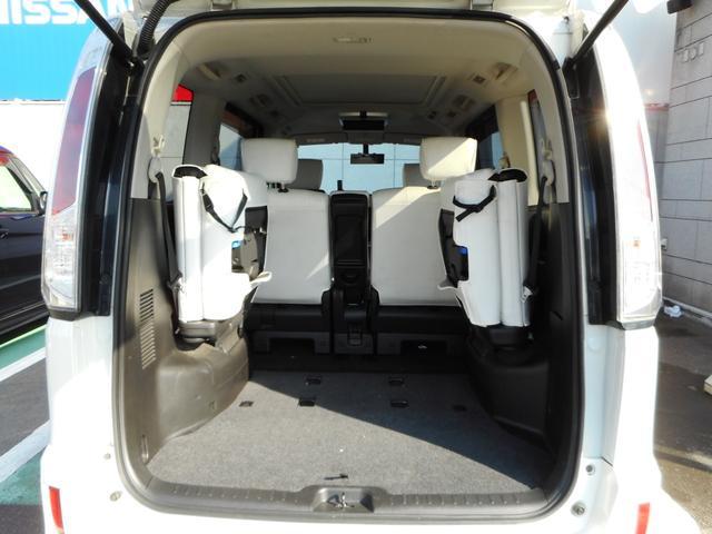 ライダー 4WD 両側電動スライドドア 社外HDDナビ(19枚目)