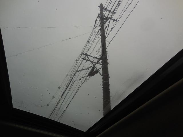 「トヨタ」「ヴァンガード」「SUV・クロカン」「青森県」の中古車20