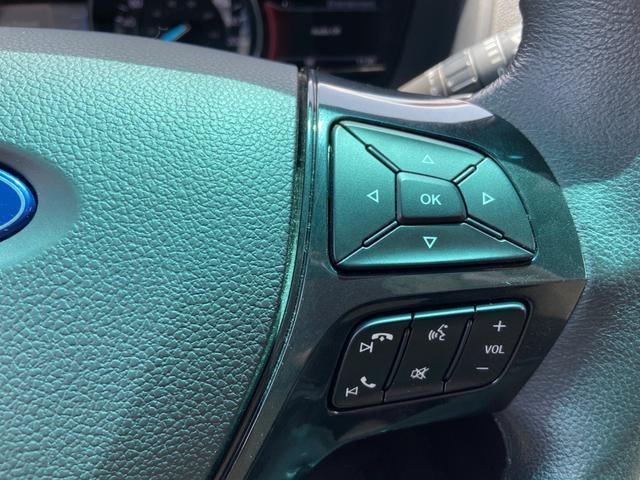 XLT エコブースト  2WD ベージュ革シート PWシート(7枚目)