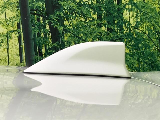 G 純正ディスプレイオーディオ トヨタセーフティセンス オートハイビーム Bluetooth再生 プッシュスタート オートエアコン 横滑り防止装置 シートリフター 電動格納ミラー(24枚目)