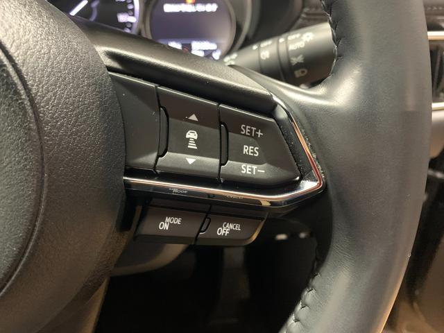 XD 4WD 禁煙車 スマートブレーキサポート CD/DVDプレーヤー ナビ バックカメラ ETC セーフティパッケージ(11枚目)