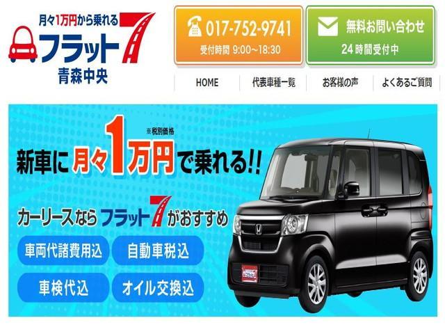 XS 4WD 左電動スライド ナビ TV バックカメラ(71枚目)