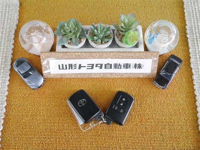 ハイブリッドV 両側パワースライドドア メモリーナビ フルセグ スマートキー ETC バックモニター LED 3列シート(17枚目)
