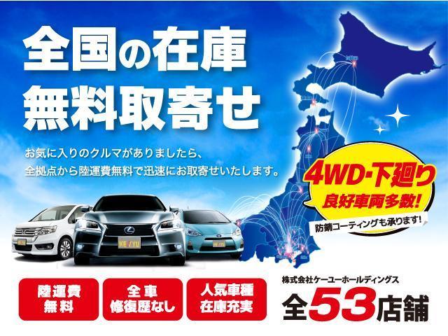 G ナビパッケージ 4WD 1オーナー 両側自動スライドドア(19枚目)
