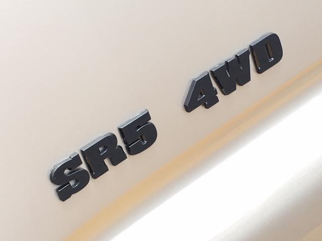 SR54WDBratオリジナルシートサンルーフ新品17AW(20枚目)