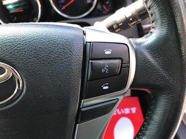 250G Sパッケージリラックスセレクション プッシュスタート パドルシフト クリアランスソナー ETC 純正ナビ フルセグ スペアキー(26枚目)