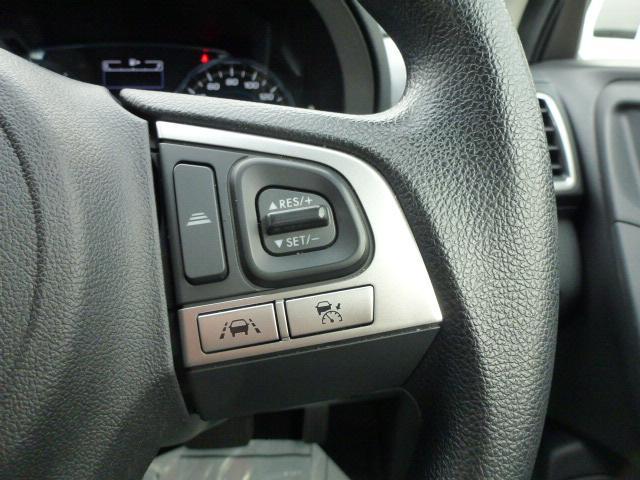 2.0i アイサイト 4WD SDナビ フルセグTV(17枚目)