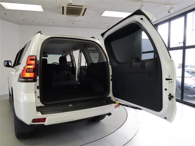 TX 4WD フルセグ メモリーナビ DVD再生 バックカメラ 衝突被害軽減システム LEDヘッドランプ ワンオーナー(24枚目)
