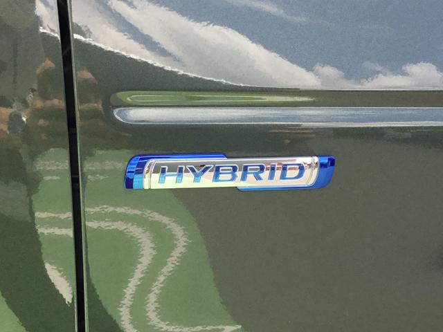 HYBRID G 前後衝突被害軽減ブレーキ オートライト(41枚目)