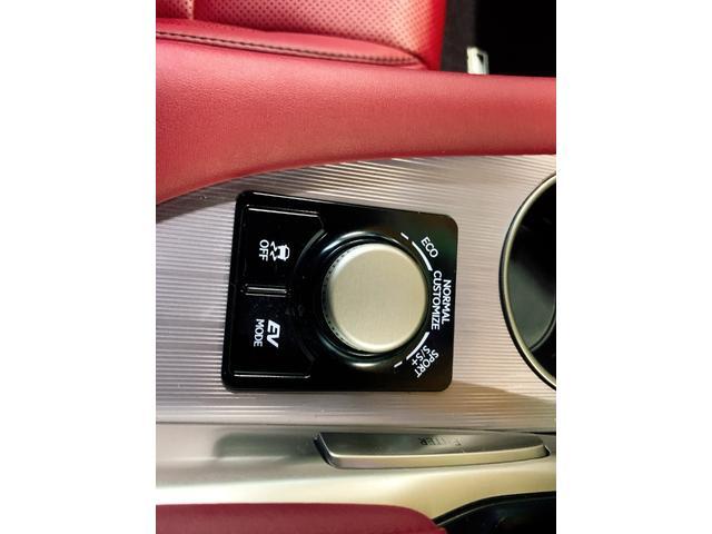 RX450h Fスポーツ レクサスRX450H ハイブリット Fスポーツ TRDフルエアロ TRD4本出しマフラー サンルーフ 赤レザー 赤革シート メモリーナビ Bluetooth プリクラッシュ LEDライト 高級SUV(79枚目)