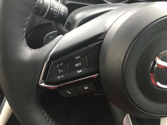 XDノーブルクリムゾン 全周囲カメラ スマートキー 4WD(19枚目)