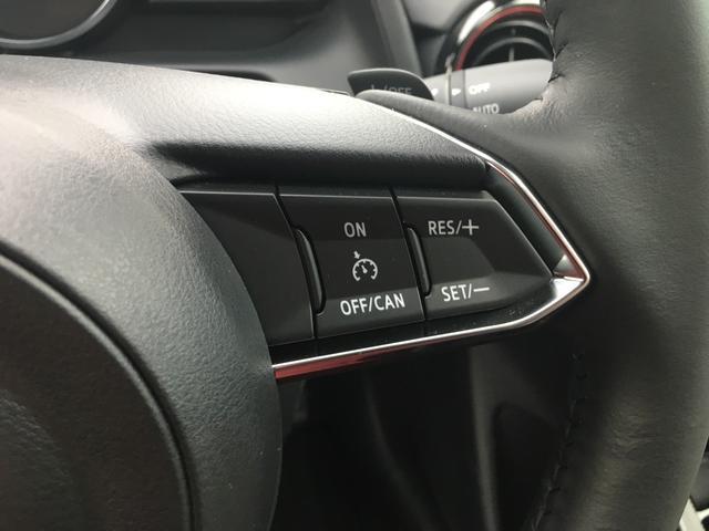 XDノーブルクリムゾン 全周囲カメラ スマートキー 4WD(20枚目)