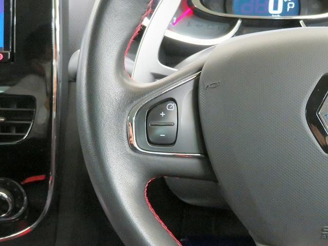 ルノースポール シャシーカップ カロッツェリアSDナビ フルセグTV バックカメラ ETC パドルシフト プッシュスタート ドライブレコーダー GPSレーダー キセノンヘッドライト 純正18inアルミホイール ウインカードアミラー(28枚目)
