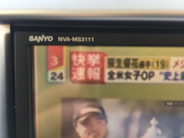 FX グー鑑定車 純正SDDナビ ワンセグTV 地デジ ETC オートエコン アイドリングストップ(32枚目)