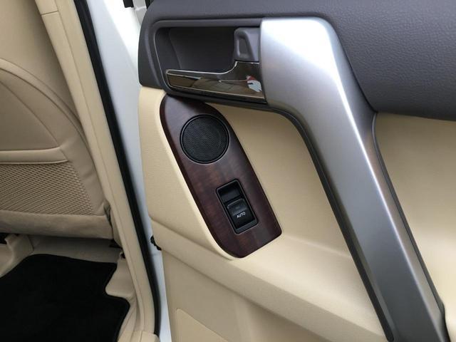 TZ-G 4WD レザーシート ナビTV サンルーフ LED(19枚目)