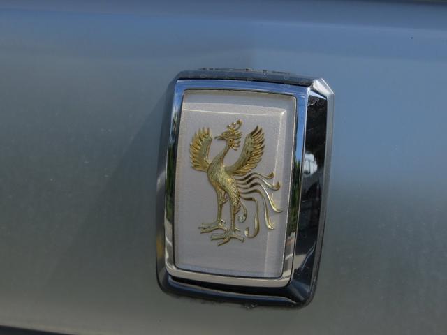 標準仕様車 デュアルEMVパッケージ(29枚目)