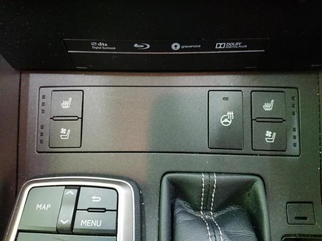 IS300h バージョンL ワンオーナー ナビ フルセグTV(14枚目)