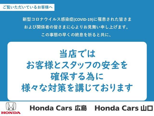 Lホンダセンシング 純正ナビ・ETC・ドライブレコーダー(41枚目)