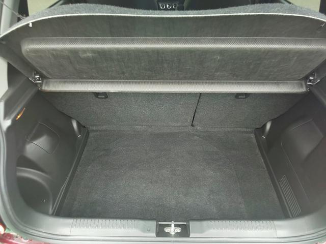 XRリミテッド 特別仕様車(24枚目)