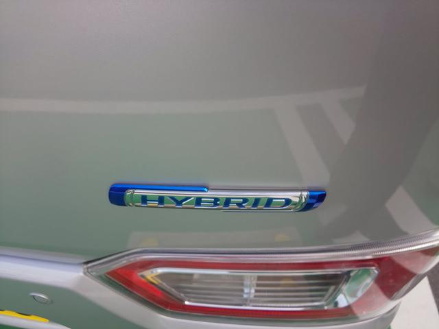 HYBRID FX 2型(43枚目)